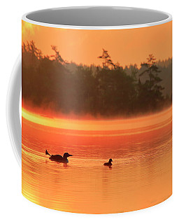 Loon With Young At Sunrise, Nova Scotia Coffee Mug