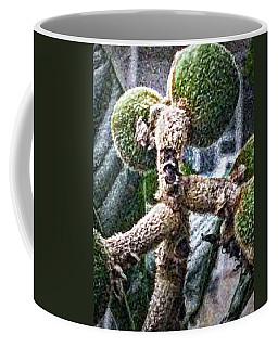 Loquat Man Photo Coffee Mug