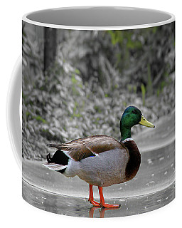 Coffee Mug featuring the photograph Lost Duck by Mariola Bitner