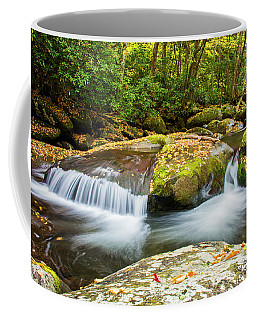 Lost Glasses Waterfall Coffee Mug
