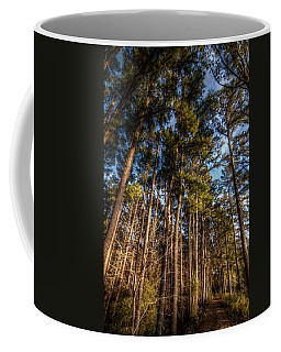 Lost In The Woods Coffee Mug