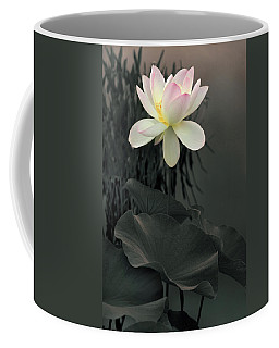 Coffee Mug featuring the photograph Lotus Aglow by Jessica Jenney