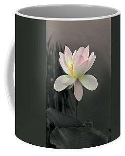 Coffee Mug featuring the photograph Lotus Alight by Jessica Jenney