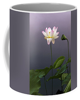 Coffee Mug featuring the photograph Lotus Ascending by Jessica Jenney