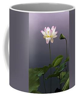 Lotus Ascending Coffee Mug by Jessica Jenney