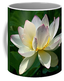 Lotus Beauty--disheveled Dl061 Coffee Mug