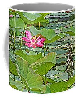 Lotus Blossom And Heron Coffee Mug