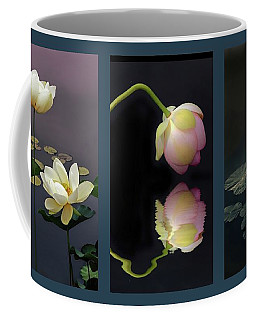 Coffee Mug featuring the photograph Lotus Blossom Triptych by Jessica Jenney