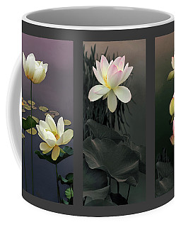 Coffee Mug featuring the photograph Lotus Collection II by Jessica Jenney