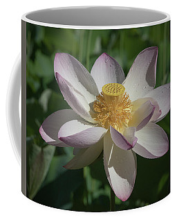 Lotus Flower In Bloom Coffee Mug
