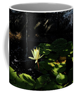 Lotus Pond Coffee Mug