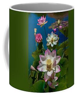 Lotus Pool Coffee Mug