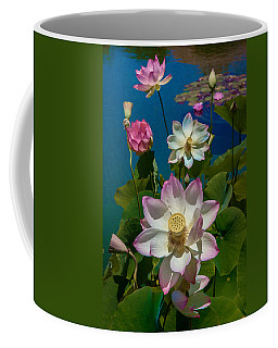 Coffee Mug featuring the photograph Lotus Pool by Chris Lord
