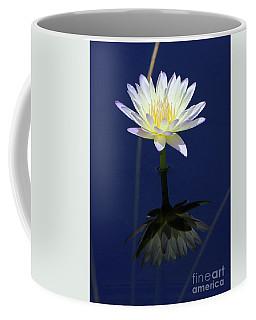 Lotus Reflection Coffee Mug