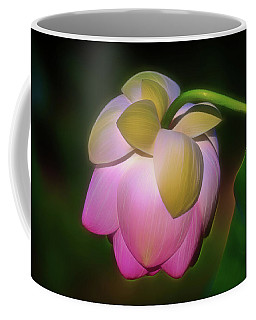 Coffee Mug featuring the photograph Lotus, Upside Down  by Cindy Lark Hartman