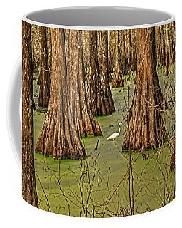 Louisiana Cajun Swamp Coffee Mug