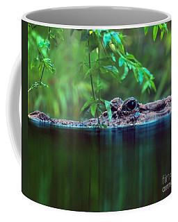 Louisiana Swimming Instructor  Coffee Mug