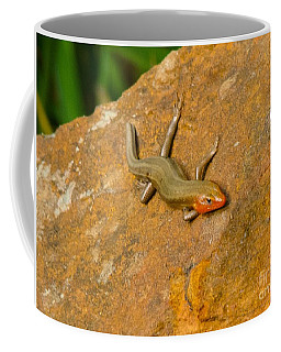 Lounging Lizard Coffee Mug by Rand Herron
