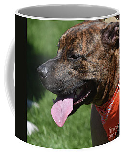 Lovable Pitbull Tired From Plating With Friends Coffee Mug