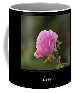 Coffee Mug featuring the photograph Love 2 by Mary Jo Allen