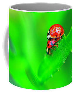 Coffee Mug featuring the photograph Love Bugs by Sharon Talson
