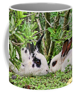Love Bunnies In Costa Rica Coffee Mug by Peggy Collins