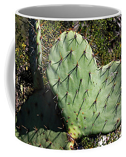 Love In The Desert Coffee Mug
