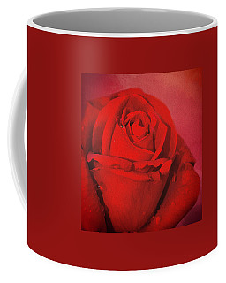 Coffee Mug featuring the photograph Love Is A Red Rose With Raindrops by Diane Schuster