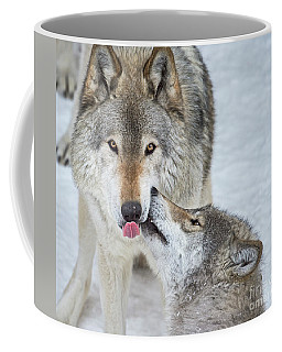 Coffee Mug featuring the photograph Love You Dad.. by Nina Stavlund