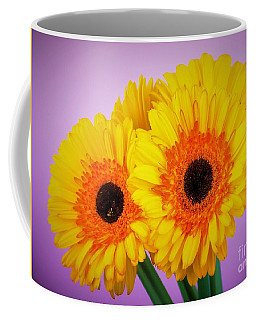 Lovely And Beautiful - Gerbera Daisies Coffee Mug by Ray Shrewsberry