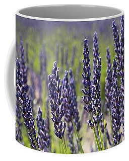 Lovely Lavender Coffee Mug