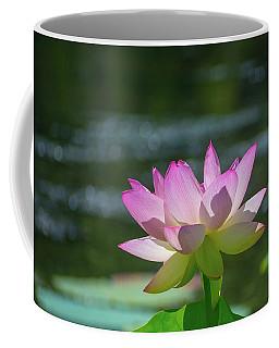 Lovely Lotus In Pink Coffee Mug