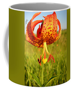 Lovely Orange Spotted Tiger Lily Coffee Mug by Kent Lorentzen