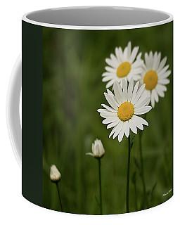 Loves Me, Loves Me Not Coffee Mug