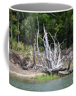 Coffee Mug featuring the photograph Low Country Driftwood by Carol  Bradley