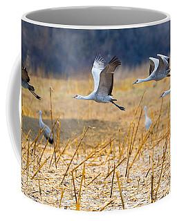 Low Level Flyby Coffee Mug