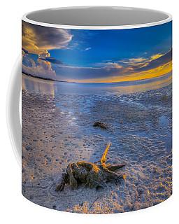 Low Tide Stump Coffee Mug