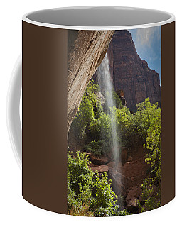 Lower Emerald Pool Falls In Zion Coffee Mug