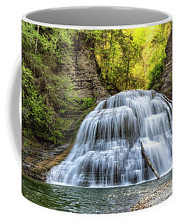 Lower Falls At Treman State Park Coffee Mug