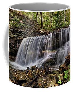 Lower Tews Falls Coffee Mug