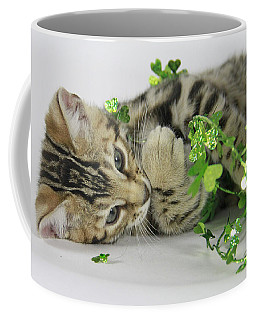 Lucky Kitten Coffee Mug by Shoal Hollingsworth