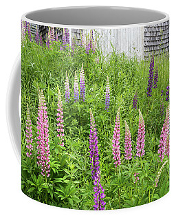 Coffee Mug featuring the photograph Lupine Cones And Weathered Shakes by Expressive Landscapes Fine Art Photography by Thom