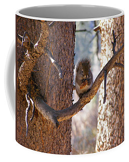 Coffee Mug featuring the photograph Lunch Time by DeeLon Merritt