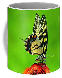 Coffee Mug featuring the photograph Lunchtime by Byron Varvarigos