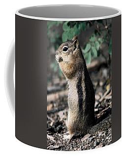 Lunchtime For Ground Squirrel Coffee Mug by Sally Weigand