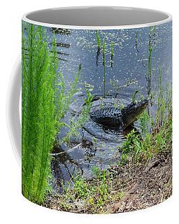 Lunging Bull Gator Coffee Mug