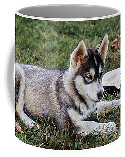 Lupe, The Husky Puppy Coffee Mug