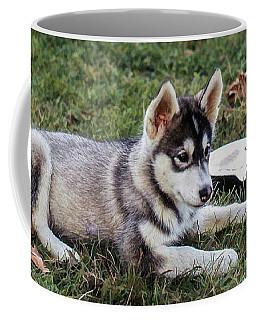 Lupe, The Husky Puppy Coffee Mug
