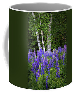 Lupine And Birch Tree Coffee Mug