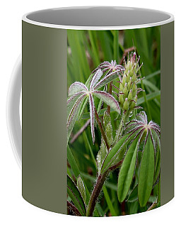 Lupine Bud Coffee Mug